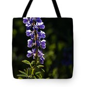 Silvery Lupine   #2 Tote Bag