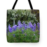 Silvery Lupine Black Canyon Colorado Tote Bag