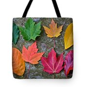 Similar But Different Tote Bag by Frozen in Time Fine Art Photography