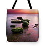 Simphony Of Color Tote Bag by Jorge Maia