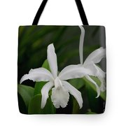 Simple And Pure Tote Bag