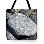 Beautifully Patterned Rock On The Beach In Alaska Tote Bag