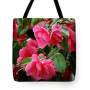 Simple Pleasure Tote Bag