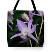 Simple Purple Tote Bag
