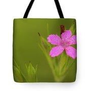 Simple Quiet Beauty  Tote Bag