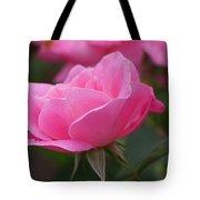 Simplicity Floribunda Rose Tote Bag