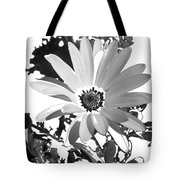 Simply Black And White Tote Bag
