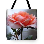 Simply Rose  Tote Bag