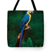 Singapore Macaw At Jurong Bird Park  Tote Bag