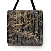 Singed Tote Bag