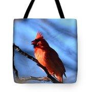 Singing Cardinal Tote Bag