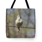 Singing His Heart Out - Carolina Wren - Thryothorus Ludovicianus Tote Bag