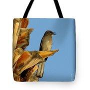 Singing Mockingbird Tote Bag