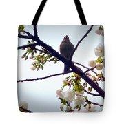 Singing Of Spring Tote Bag