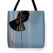 Blackbird Melody Tote Bag