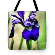 Single And Beautiful Tote Bag