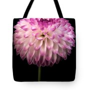 Single And Beautiful Tote Bag