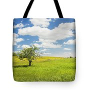 Single Apple Tree In Maine Blueberry Field Tote Bag