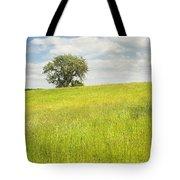 Single Apple Tree In Maine Hay Field Tote Bag