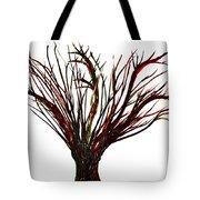 Single Bare Tree Isolated Tote Bag