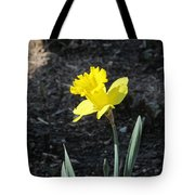 Single Daffodil Tote Bag