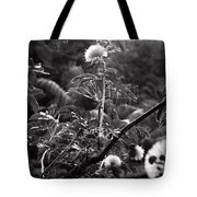 Single Flower In A Spider Web Tote Bag