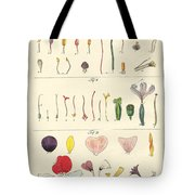 Single Flower Parts Tote Bag