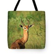 Single Grant's Gazelle Tote Bag
