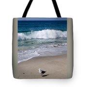 Single Seagull On The Beach Tote Bag