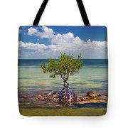 Single Mangrove Tree In The Gulf Tote Bag