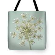Single Queen Anne's Lace Tote Bag
