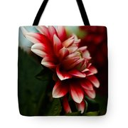 Single Red Dahlia Tote Bag