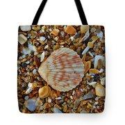 Single Shell Hatteras Island 17 9/3 Tote Bag