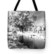 Single Tree Aginst The Sun Tote Bag