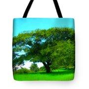 Single Tree In Spring Tote Bag