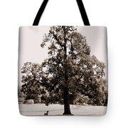 Single Tree Journey Tote Bag