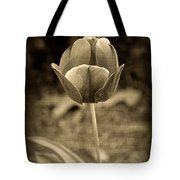 Single Tulip Tote Bag