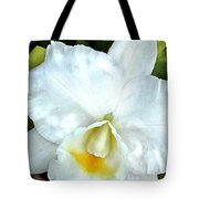 Single White Cattleya Orchid Tote Bag