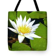 Single White Water Lily Tote Bag