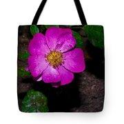 Single Wild Rose Tote Bag