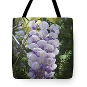 Single Wisteria  Tote Bag