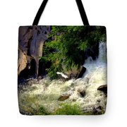 Sinks Waterfall Tote Bag by Karen Wiles