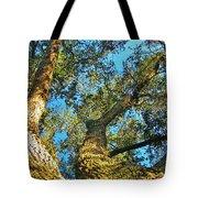 Sister Oaks Tote Bag