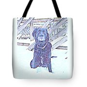 I'm Sitting By The Old Fence Waiting For You  Tote Bag