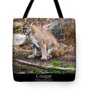 sitting Cougar Tote Bag