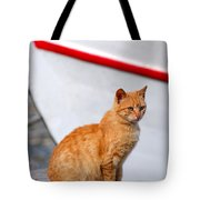 Sitting On Pier Tote Bag