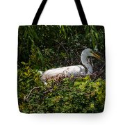 Sitting On The Nest Tote Bag