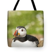 Sitting Puffin Tote Bag
