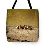 Six Ducklings In A Row Tote Bag