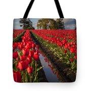 Skagit Glorious Day Tote Bag